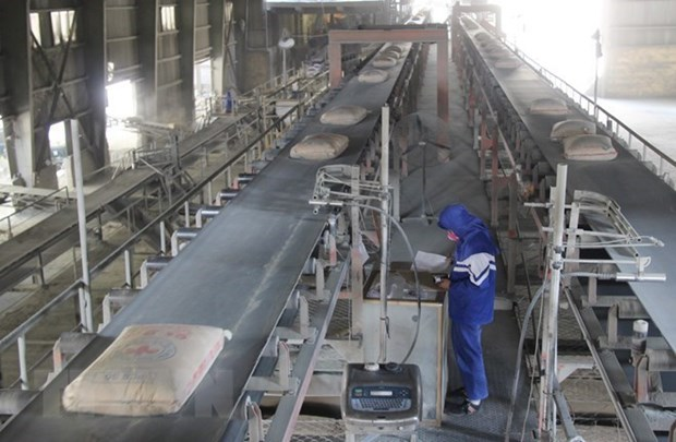 Cement exports record strong growth in first half hinh anh 1