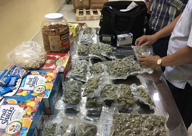 Customs officers uncover 4kg of marijuana at Tan Son Nhat airport hinh anh 1