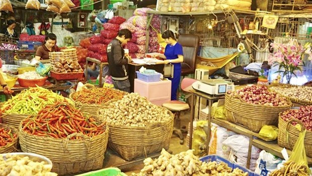 Wholesale markets need more investment hinh anh 1