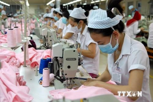 Over 64,500 new enterprises set up in first half of 2018 hinh anh 1