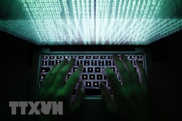 Cyber Security Law protects citizens' interest, national security hinh anh 1