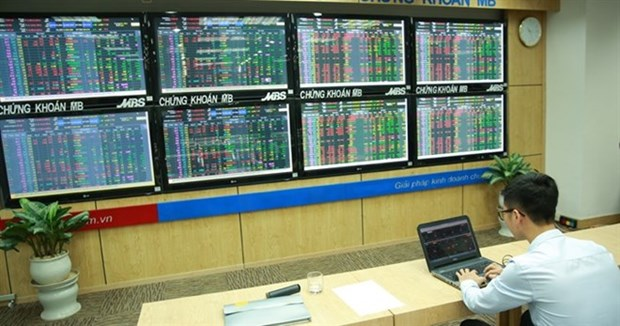 Indices fall on week's first trading day hinh anh 1