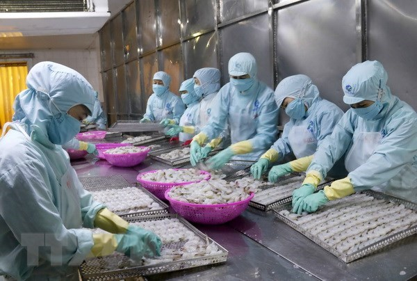 Vietnam's export of aquatic products grows strongly in year's first half hinh anh 1