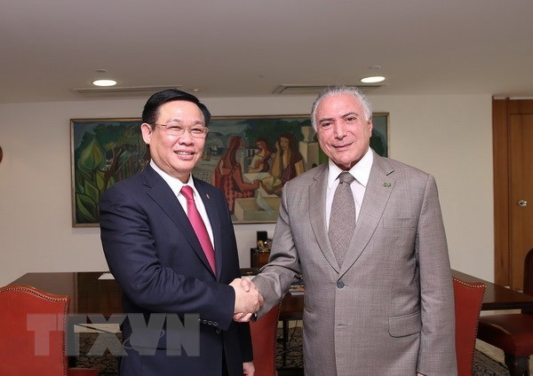 Vietnam, Brazil cement multifaceted cooperation hinh anh 1