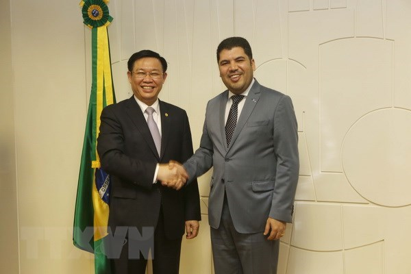 Vietnam, Brazil cement multifaceted cooperation hinh anh 2