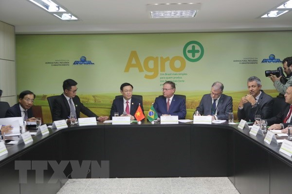 Vietnam, Brazil cement multifaceted cooperation hinh anh 3