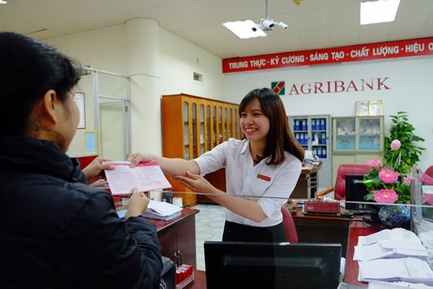 Agribank lends over 219 million USD to develop hi-tech agriculture hinh anh 1