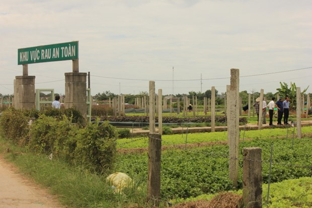 Thua Thien–Hue mobilises trillions of VND for new-style rural development hinh anh 1