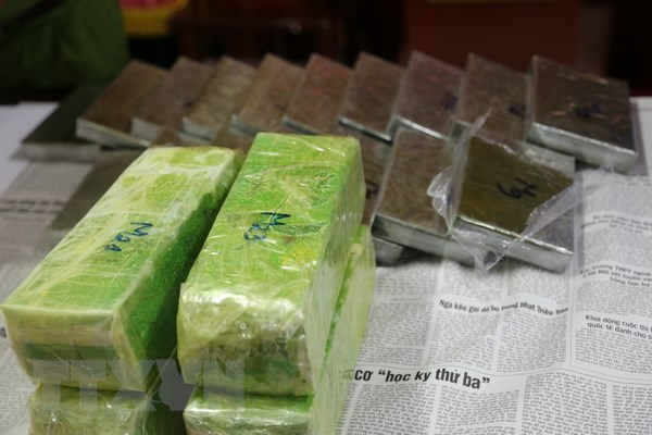 Drug ring busted in central Nghe An province hinh anh 1