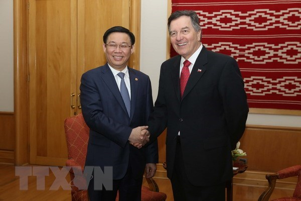 Chile – Vietnam's important Latin American partner: Deputy PM hinh anh 1