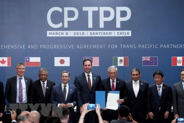 Japan completes domestic procedures to ratify CPTPP hinh anh 1
