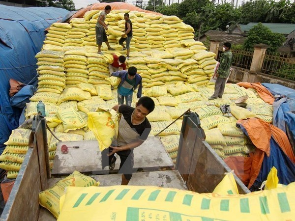 Vietnam imports over 2.4 million tonnes of fertiliser in six months hinh anh 1
