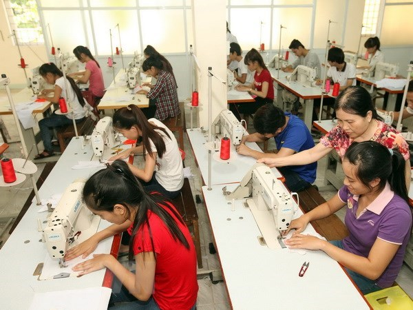 Can Tho: SMEs gain knowledge about engaging in global value chains hinh anh 1