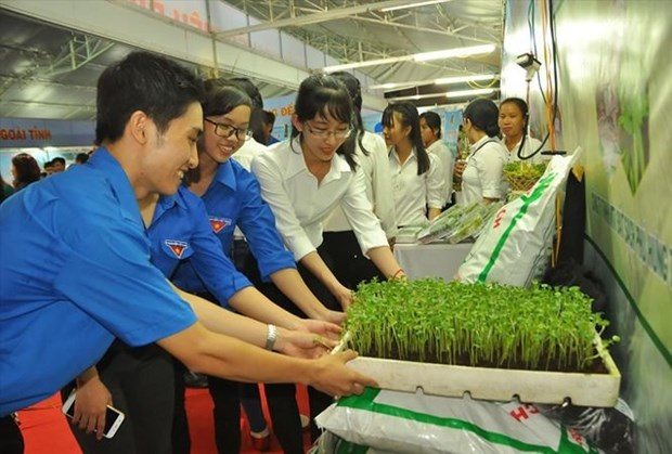 Ben Tre province supports start-ups hinh anh 1