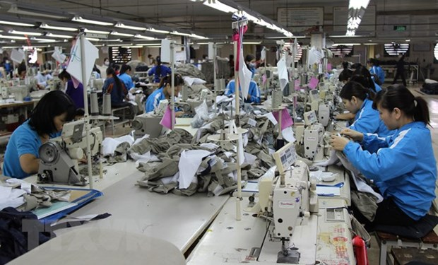 Vietnam, RoK see bright prospects in textiles partnership hinh anh 1