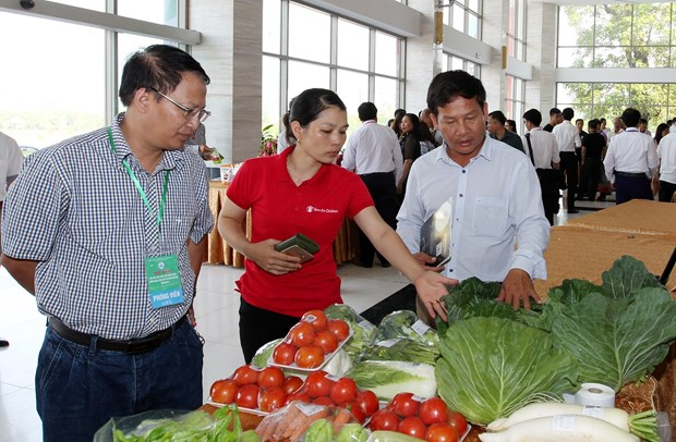 Lao Cai boosts farm produce trade with China's Yunnan hinh anh 1