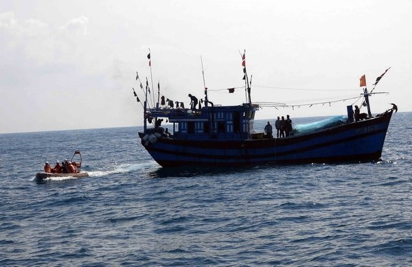 Ca Mau tightens control of fishing fleet hinh anh 1