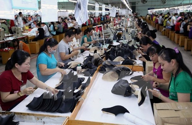 Chances for Vietnam's leather industry abundant in 2018 hinh anh 1