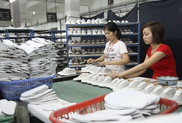 Indian, Vietnamese leather companies seek stronger ties hinh anh 1