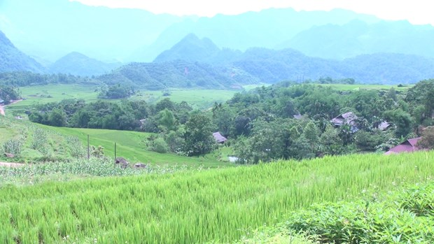 Mountainous district becomes emerging travel destination hinh anh 1