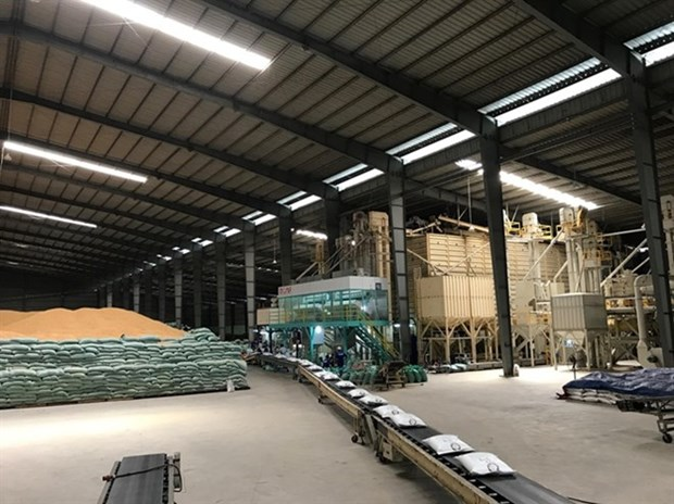 Vietnam wins contract to export rice to RoK hinh anh 1