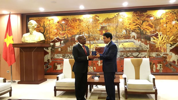 Hanoi looks to strengthen links with South Africa hinh anh 1