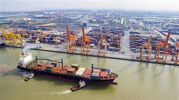Vietnam posts record trade surplus in first half hinh anh 1