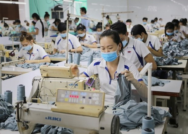 Vietnam, India boost cooperation in apparel industry hinh anh 1