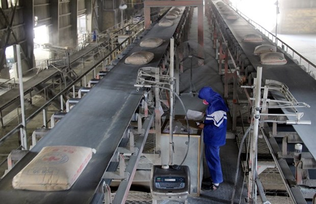 Strict environmental control set for paper, cement plants hinh anh 1