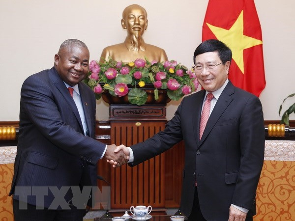Deputy PM Pham Binh Minh welcomes new Mozambican ambassador hinh anh 1