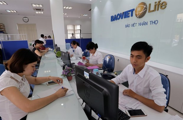 Insurance industry hits growth of 24 percent in H1 hinh anh 1