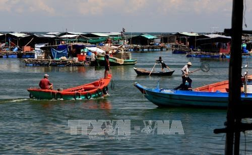 Kien Giang urged to protect aquatic resources hinh anh 1