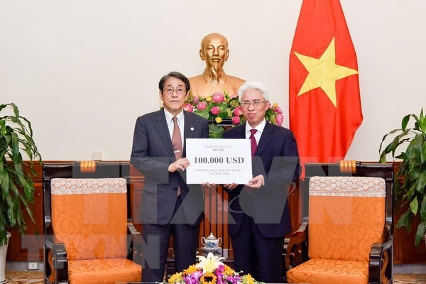 Vietnam presents donation to aid Japan's flood relief hinh anh 1
