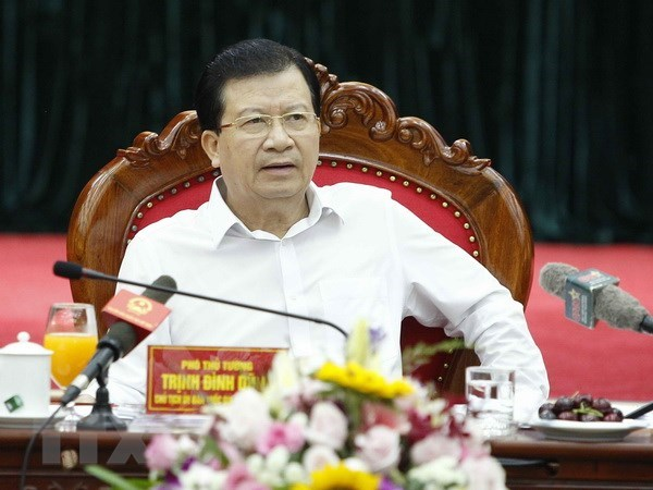 Deputy PM calls for improvements in disaster, incident response hinh anh 1