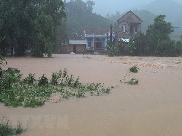 Casualties, missing victims from torrential rains, floods mounts to 63 hinh anh 1