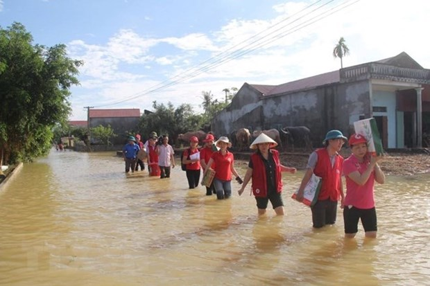 Vietnam Red Cross enhances cooperation with IFRC hinh anh 1