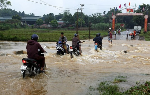 Downpours, flooding wreak havoc in northern localities hinh anh 1