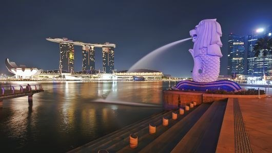 Singapore sees sharp increase in Indian arrivals hinh anh 1