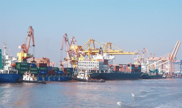 Maritime cargo shipping sees positive growth in first half of 2018 hinh anh 1