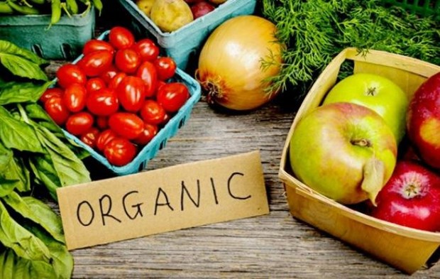 Indonesia strengthens export of organic products hinh anh 1