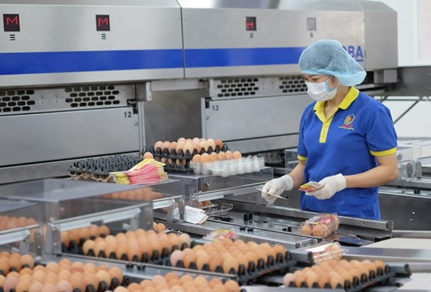 More opportunities for poultry export to Japan hinh anh 1