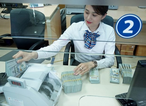 Reference exchange rate down 16 VND on week's beginning hinh anh 1