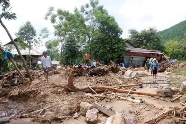 Joint efforts made to overcome flood consequences hinh anh 1