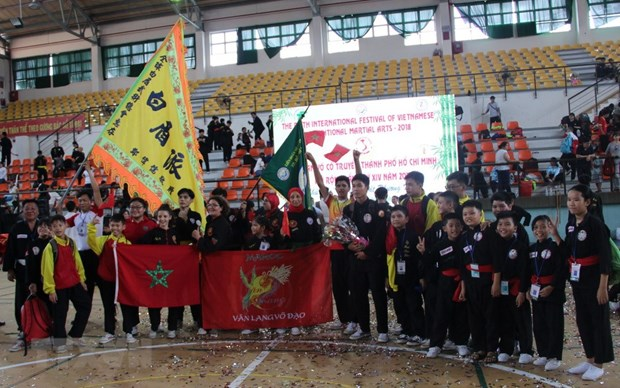 Outstanding fighters named at martial arts festivals hinh anh 3