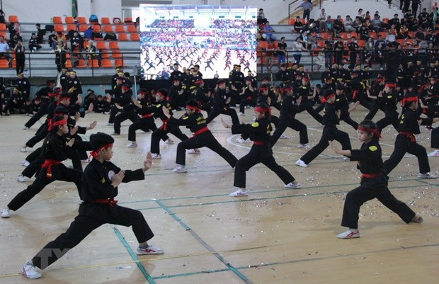 Outstanding fighters named at martial arts festivals hinh anh 1
