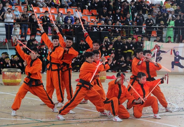 Outstanding fighters named at martial arts festivals hinh anh 2
