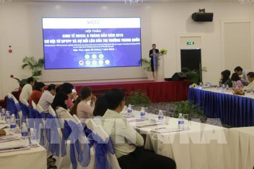Seminar helps Mekong Delta firms grasp chances from CPTPP hinh anh 1