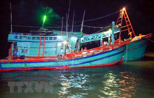 Ca Mau fishermen receive loans to build or upgrade ships hinh anh 1