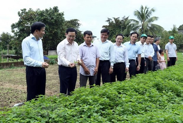 Deputy PM urges creativity in building new rural areas hinh anh 1