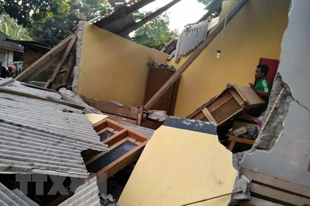 Earthquake on Indonesia's Lombok island kills at least ten hinh anh 1